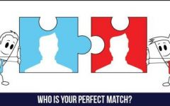 Who Is Your Match